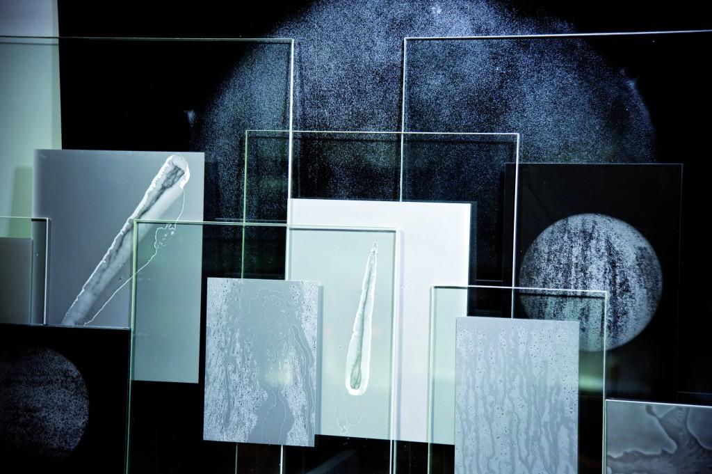 La Mémoire de l'eau, 2015, photogrammes d'eau, de glace, de buée sous verre, dimension variable. Photographe: Camille Roux.